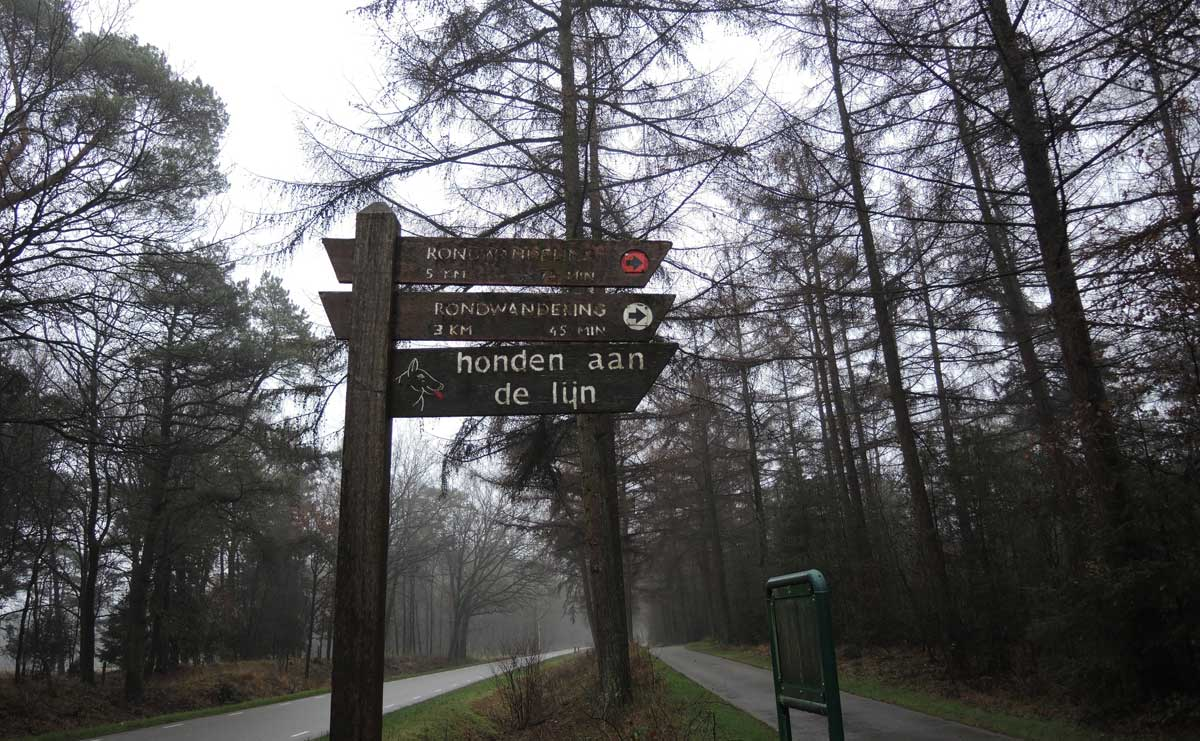 Landgoed Boschoord – witte route 1 – voetzoekers