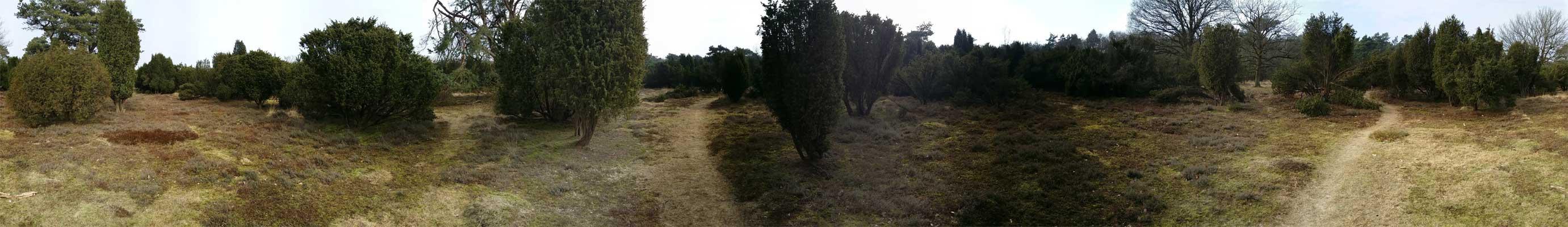 Panorama-De-Palms-voetzoekers