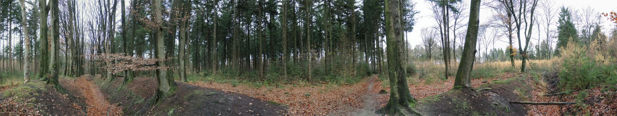 boswachterij-gees-rode-route-panorama-voetzoekers