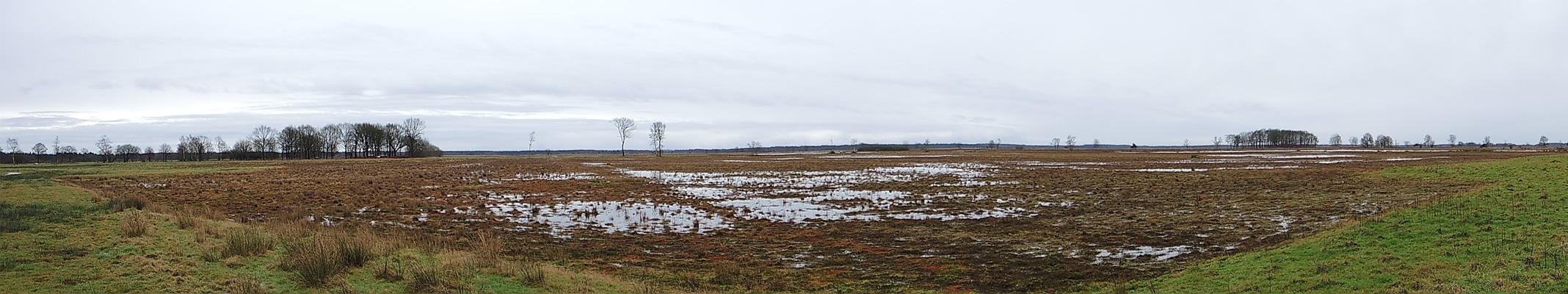 familiepad-noordenveld-panorama-2-voetzoekers