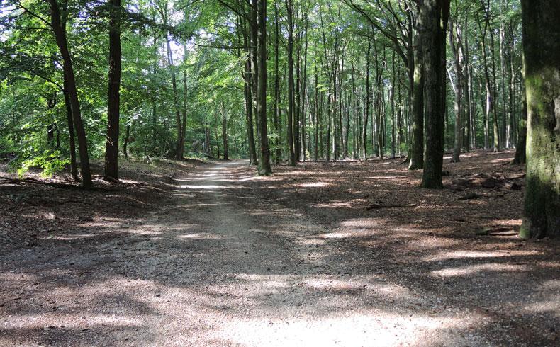 filosofenroute 2 – voetzoekers