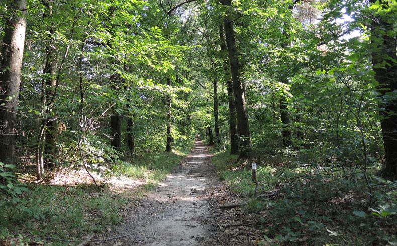 filosofenroute 8 – voetzoekers