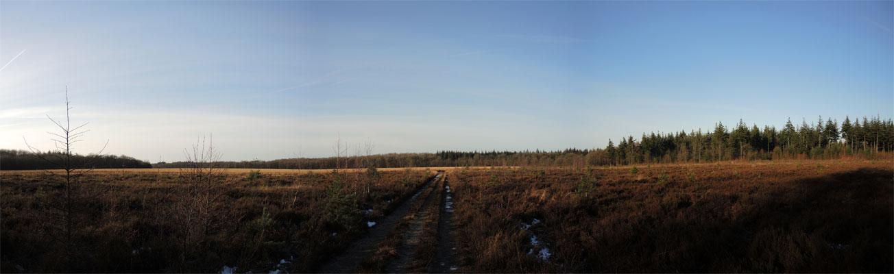 halkenpad-boswachterij-grolloo-panorama-voetzoekers