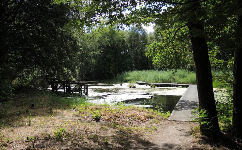 Havenroute – Waterloopbos 17 – voetzoekers