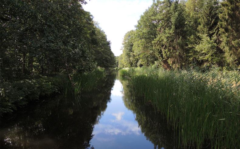 Havenroute – Waterloopbos 6 – voetzoekers