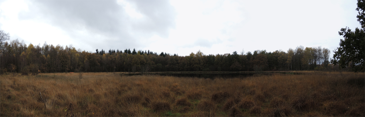 landgoed-vossenberg-panorama-ven-2-voetzoekers.vr