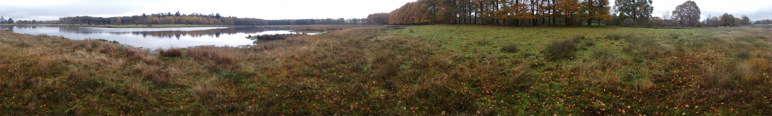 landgoed-vossenberg-panorama-voetzoekers.vr