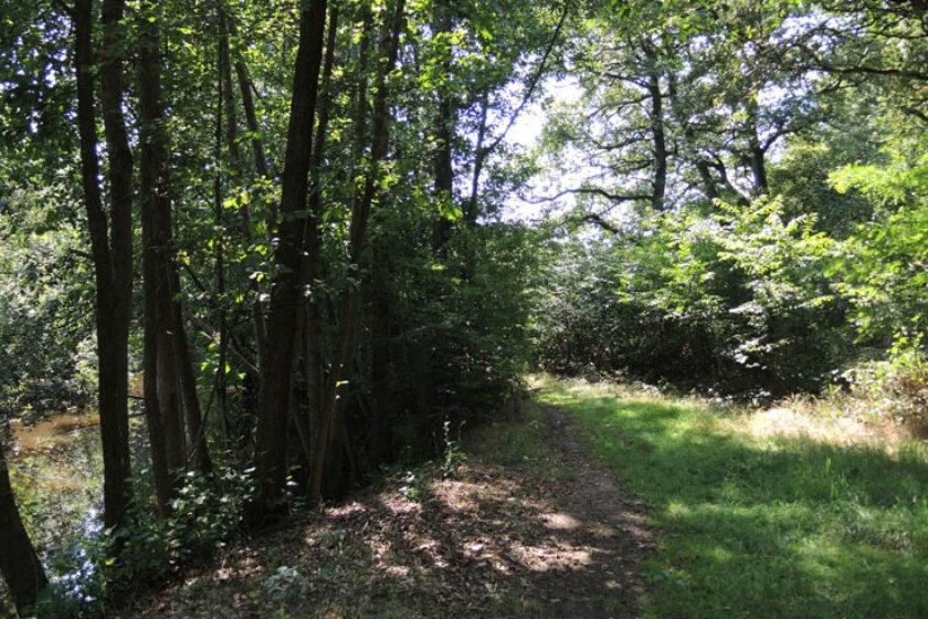 Natuurbelevingspad Westerwolde – 13 Pad langs ruiten Aa – voetzoekers
