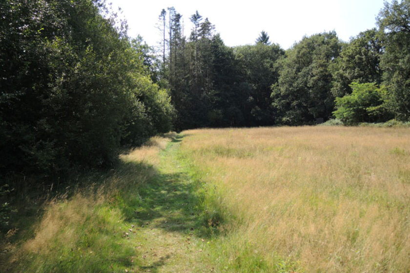 Natuurbelevingspad Westerwolde – 16 Einde route – voetzoekers