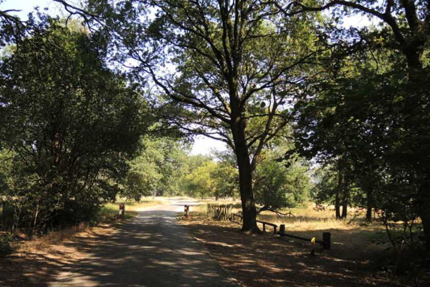 Natuurbelevingspad Westerwolde – 9 Oversteken verharde weg – voetzoekers