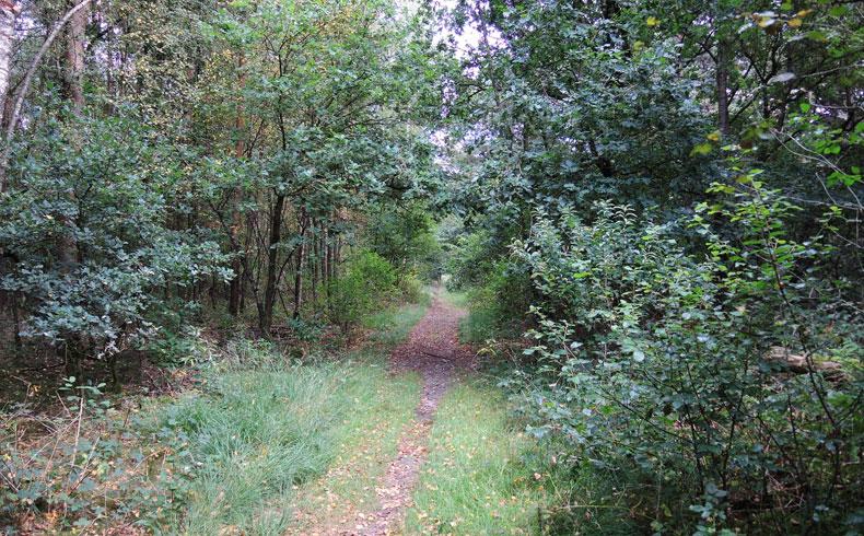 Rivierduinenroute 12 – voetzoekers