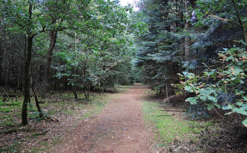 Rivierduinenroute 14 – voetzoekers