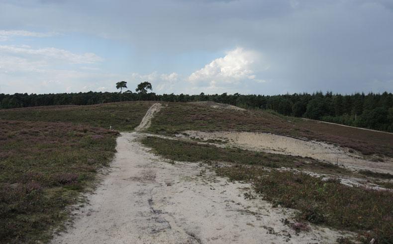 Rivierduinenroute 18 – voetzoekers