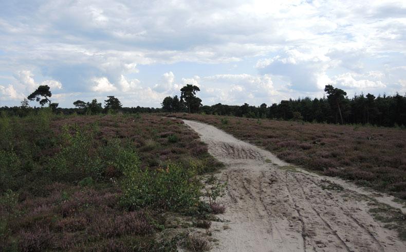 Rivierduinenroute 19 – voetzoekers