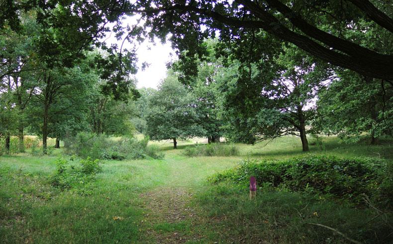 Rivierduinenroute 2 – voetzoekers