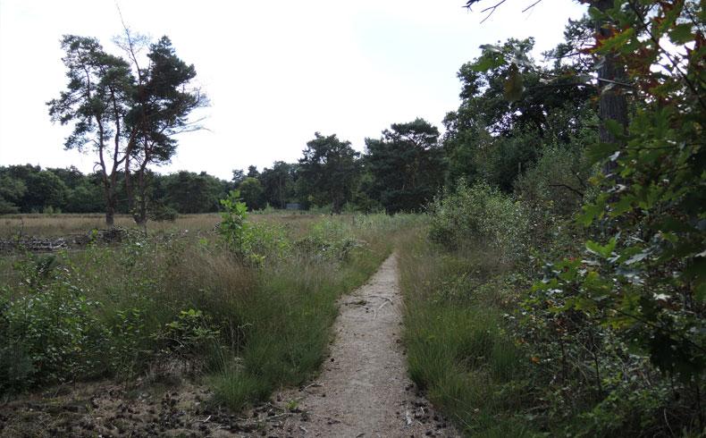 Rivierduinenroute 20 – voetzoekers