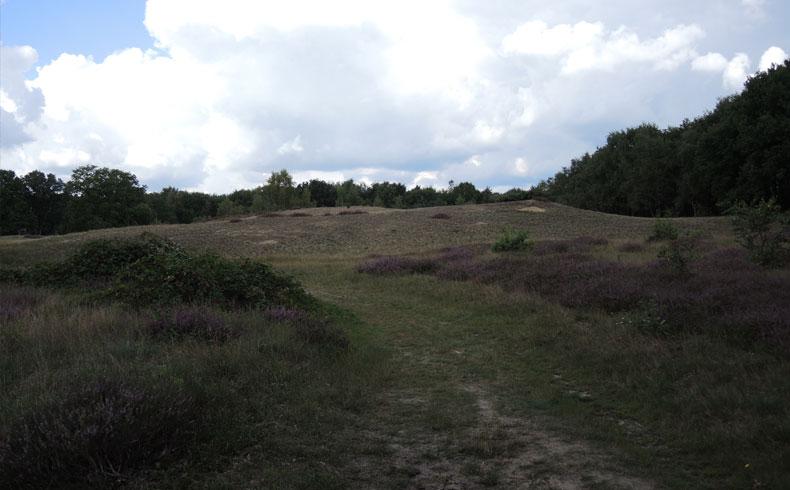Rivierduinenroute 3 – voetzoekers