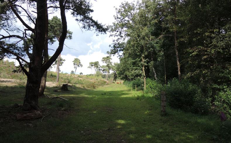 Rivierduinenroute 4 – voetzoekers