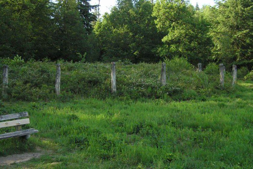 voetzoekers – Archeologische route Sleenerzand 12