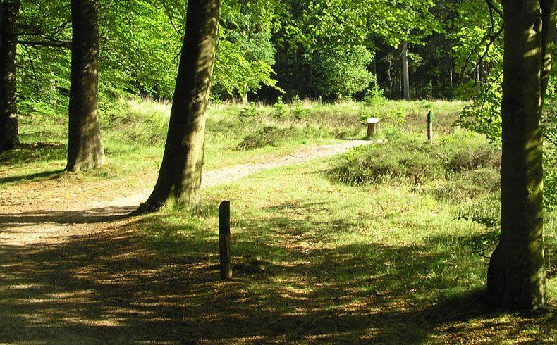 voetzoekers – Archeologische route Sleenerzand 3