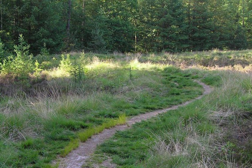 voetzoekers – Archeologische route Sleenerzand 6