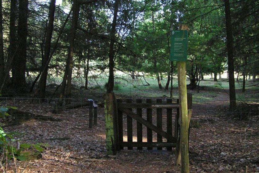 voetzoekers – Archeologische route Sleenerzand 8