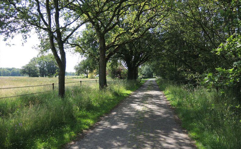 voetzoekers – Beekdal Hondstong route 11