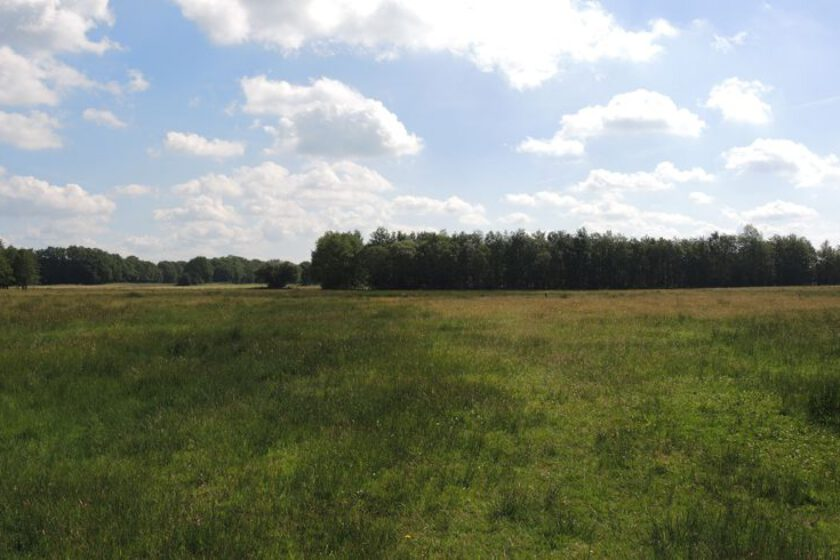 voetzoekers – Beekdal Hondstong route 2