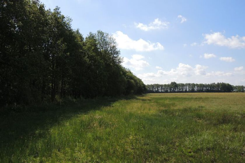 voetzoekers – Beekdal Hondstong route 4