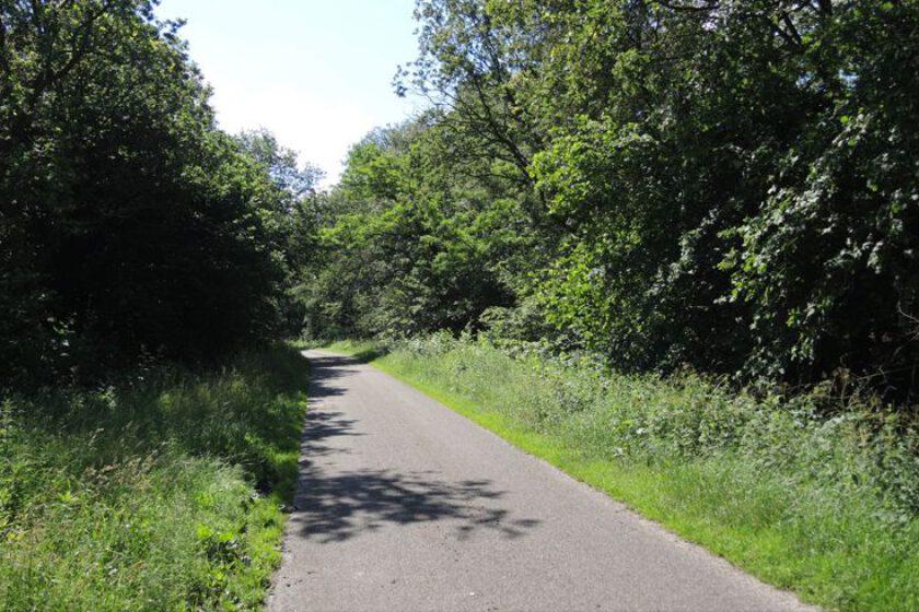 voetzoekers – Beekdal Hondstong route 9