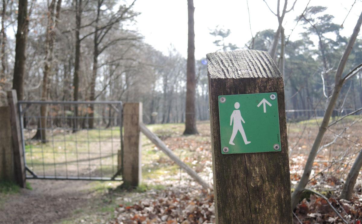 voetzoekers Boswachterij Ruinen – Groene route 1