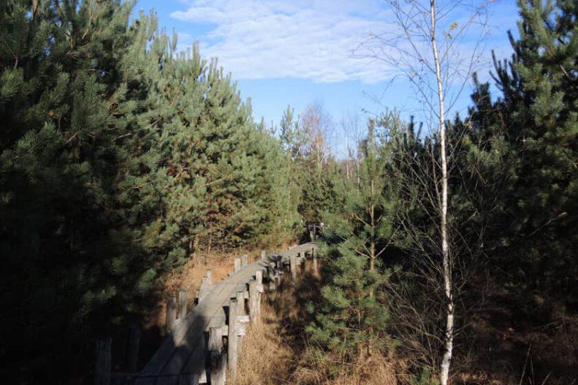 voetzoekers – Boswandeling Spier 13