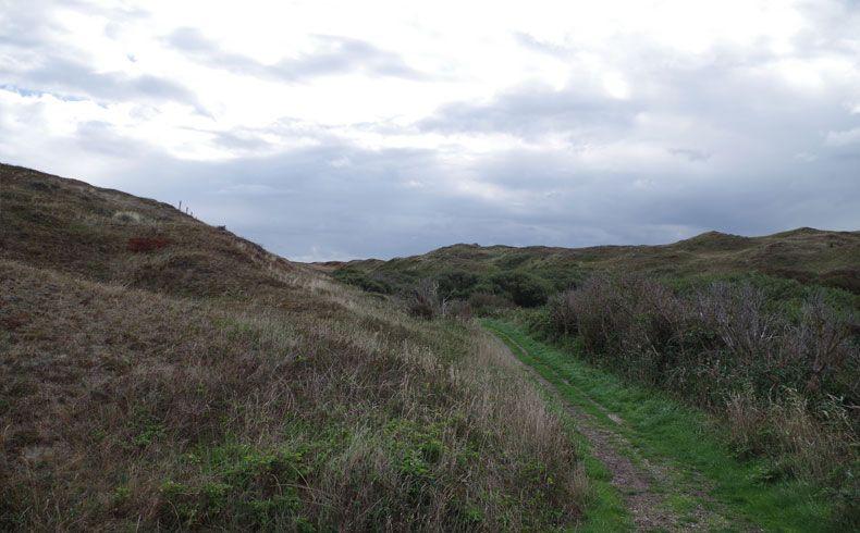 voetzoekers – De Muy – Texel – 10