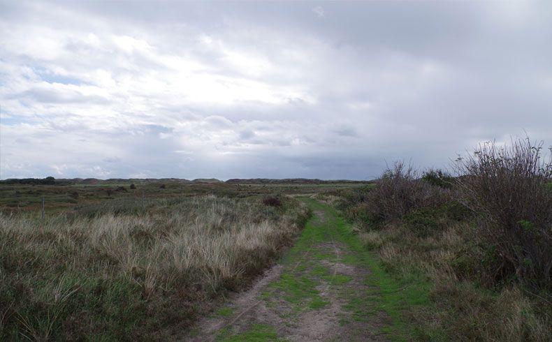 voetzoekers – De Muy – Texel – 11