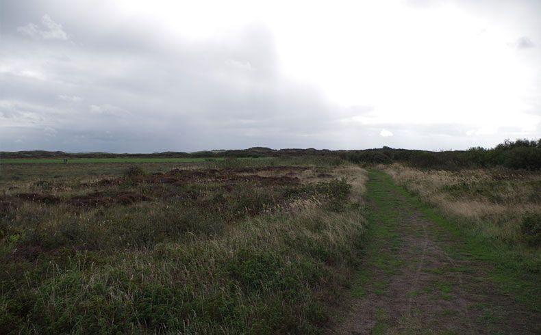 voetzoekers – De Muy – Texel – 12