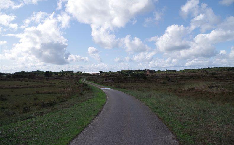 voetzoekers – De Muy – Texel – 14