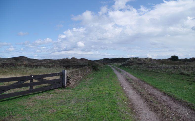 voetzoekers – De Muy – Texel – 16