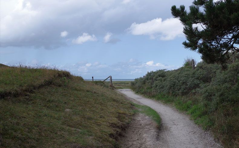 voetzoekers – De Muy – Texel – 18