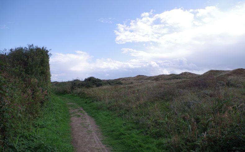 voetzoekers – De Muy – Texel – 4