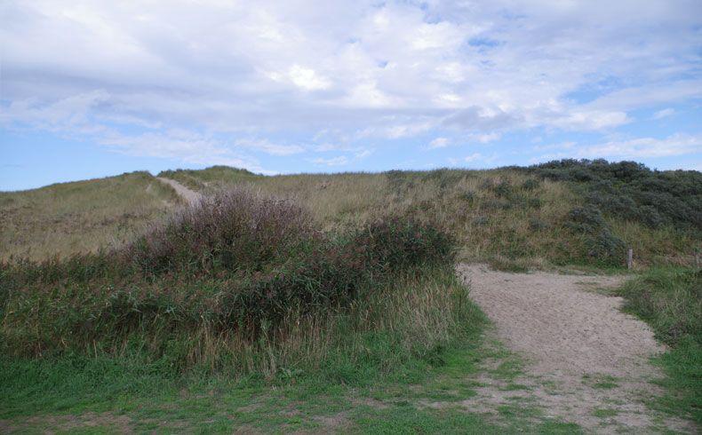 voetzoekers – De Muy – Texel – 8