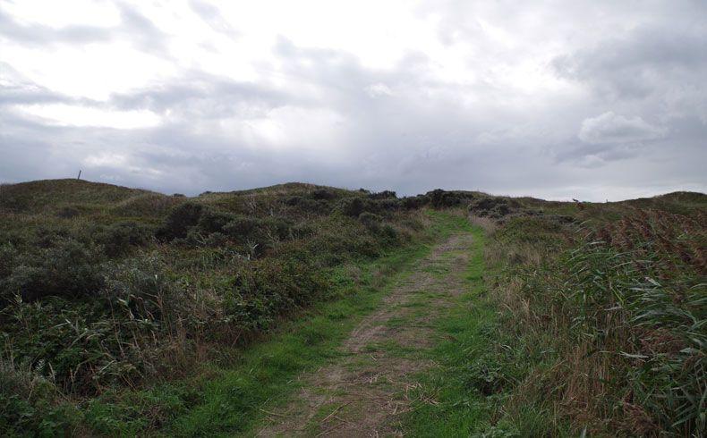 voetzoekers – De Muy – Texel – 9