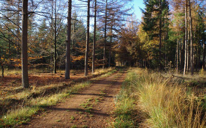 voetzoekers – Esmeerroute 10