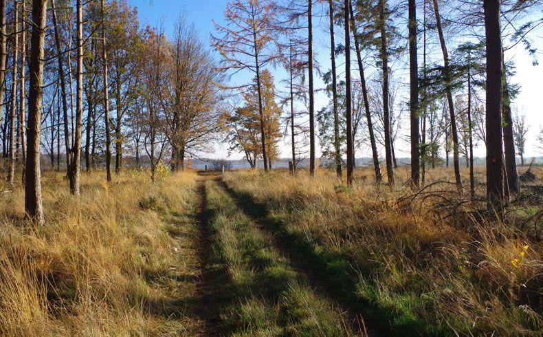 voetzoekers – Esmeerroute 12