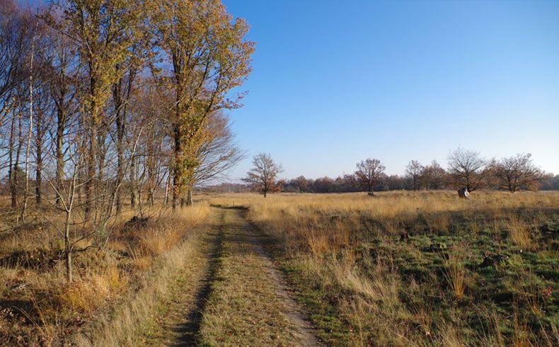 voetzoekers – Esmeerroute 14