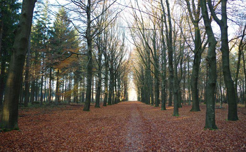 voetzoekers – Esmeerroute 16