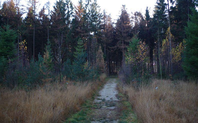 voetzoekers – Esmeerroute 5