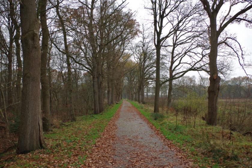 voetzoekers – Familiepad Drentsche Aa – Route 10