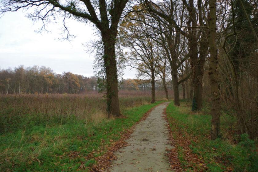 voetzoekers – Familiepad Drentsche Aa – Route 11