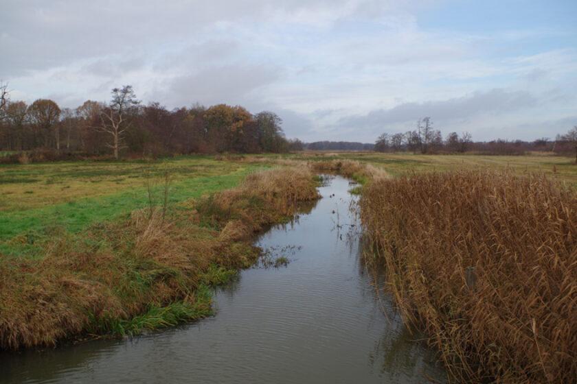 voetzoekers – Familiepad Drentsche Aa – Route 2