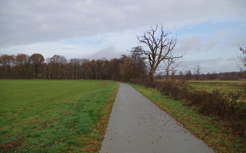 voetzoekers – Familiepad Drentsche Aa – Route 3